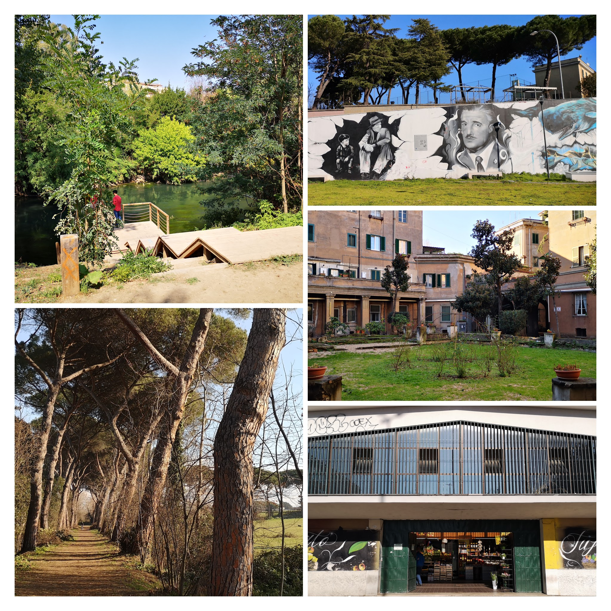 IMG_20200918_123441-COLLAGE